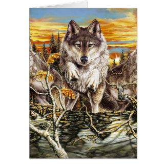 Pack of wolvesrunning card