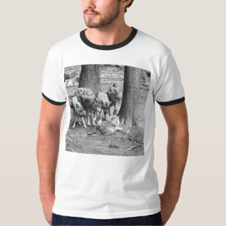 Pack of Wolves T-Shirt
