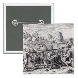 Pack Train of Llamas Laden with Silver Pinback Button