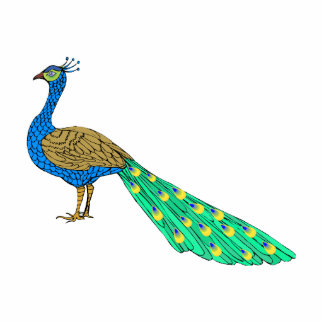 Packer Peacock Cut Outs