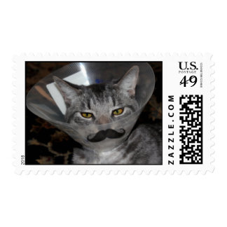 Packet of Ferris Mewler postage stamps.  For real.