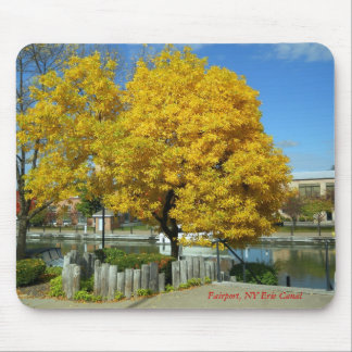Packetts Landing, Fairport, NY Erie Canal Mouse Pad