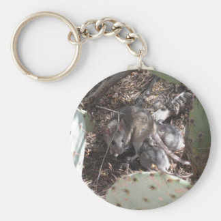 Packrat Mother with Babies Basic Round Button Keychain