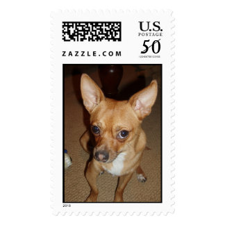 PACO POSTAGE