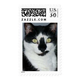 Paco The Pussycat Postage