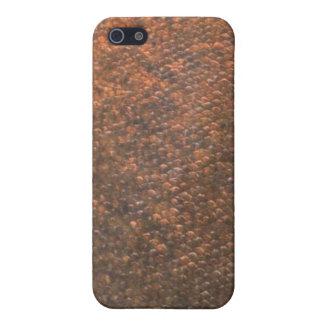 Pacu - cubierta de Iphone de la piel de los pescad iPhone 5 Carcasa