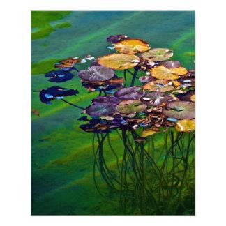 Pad Floater Photo Art