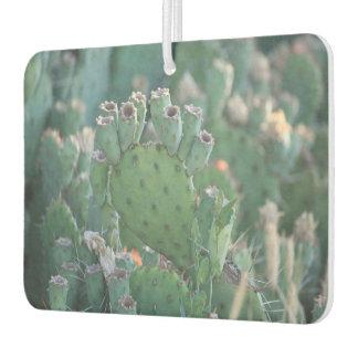 Paddle Cactus Air Freshener