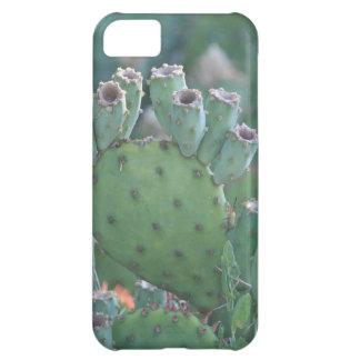 Paddle Cactus iPhone 5C Cover