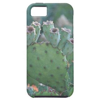 Paddle Cactus iPhone SE/5/5s Case