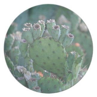 Paddle Cactus Melamine Plate