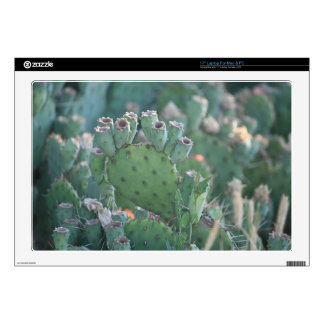 Paddle Cactus Skins For Laptops