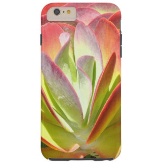 PADDLE PLANT(KALANCHOE)/LAVENDER;LIME-GREEN;SALMOM TOUGH iPhone 6 PLUS CASE