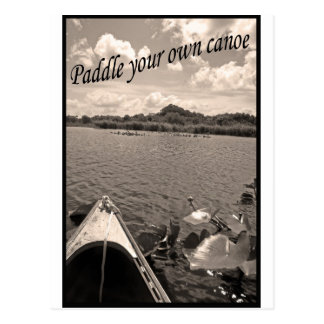 paddle your own canoe postcard