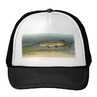 Paddlefish Gorras De Camionero