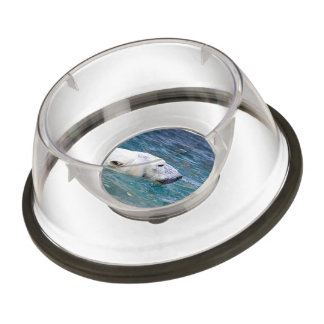 Paddling Polar Bear Pet Bowl