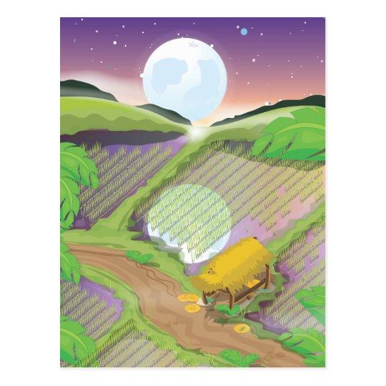 Paddy field postcard