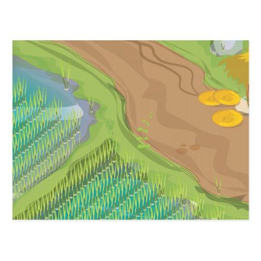 Paddy field postcards