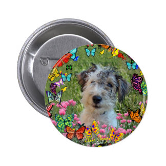 Paddy in Butterflies Button