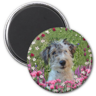 Paddy in Flowers 2 Inch Round Magnet