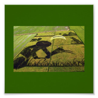 Paddy Rice Art Green Peace In Japan Poster