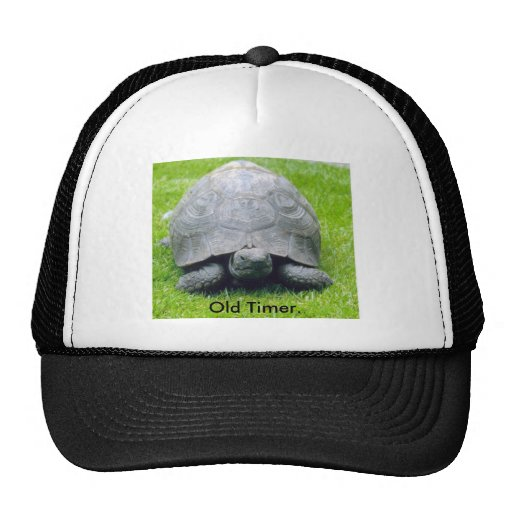 Paddy the tortoise., Old Timer. Trucker Hat