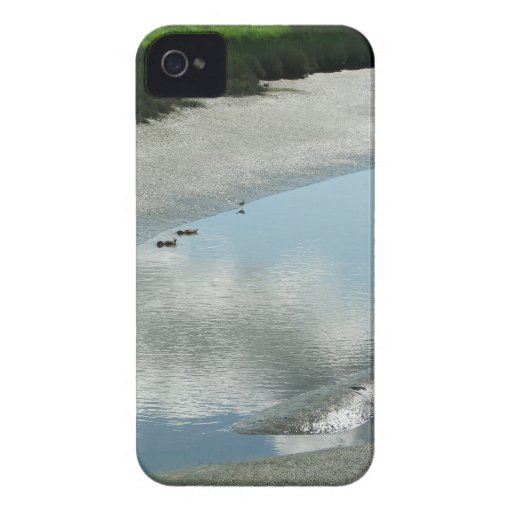 Padilla Bay Trail iPhone 4 Case-Mate Cases