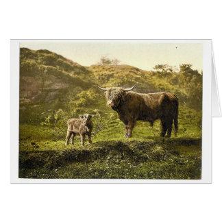 Padre e hijo (ganado) de la montaña, obra clásica  tarjetón