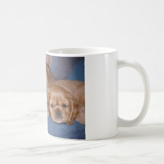Padre y hijo de rubíes arrogantes tazas de café