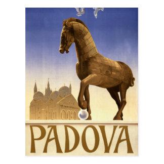 Padua Padova Italy Vintage Travel Poster Restored Postcard