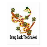 Pagan Snakes Postcard