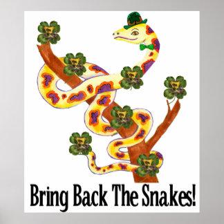 Pagan Snakes Poster