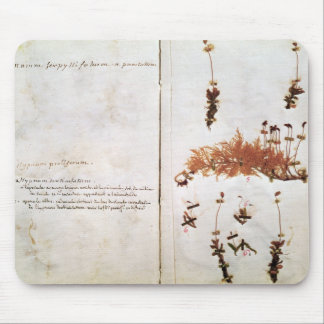 Page 15 from a Herbarium Mouse Pad