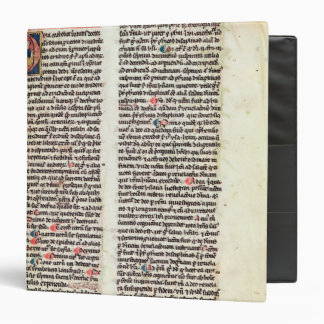 Page from the 'Somme de Theologie' 3 Ring Binder