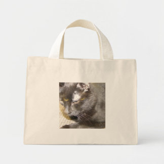 Pagen The Cat Bag
