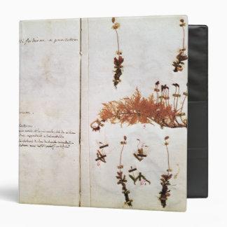 """Página 15 de un herbario carpeta 1 1/2"""""""