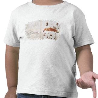 Página 15 de un herbario camisetas