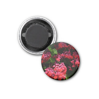 Pagoda Flowers Colorful Red and Pink Floral Magnet