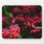 Pagoda Flowers Colorful Red and Pink Floral Mouse Pad