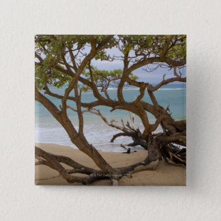 Paia Bay Beach, Maui, Hawaii, USA Button