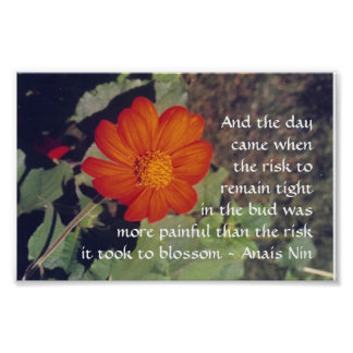 Pain and Risk - Anais Nin - poster