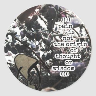 pain is not the origin of thought or wisdom classic round sticker