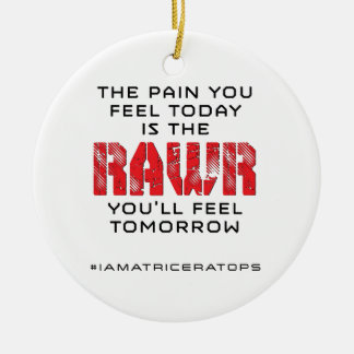 Pain Today - RAWR Tomorrow Ceramic Ornament