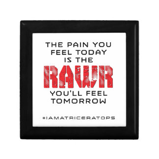 Pain Today - RAWR Tomorrow Gift Box