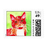 'Paint' AFRP kitty Stamps