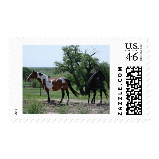 Paint and Black Horses Stamps