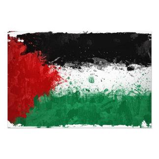 Paint Art Grunge Palestine Flag Photo Print