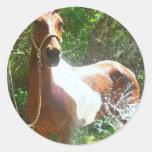 Paint Bath Classic Round Sticker
