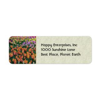 Paint Box Label