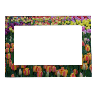 Paint Box Magnetic Photo Frame